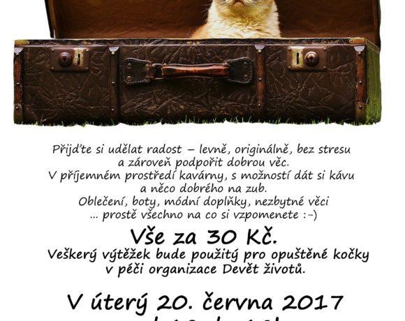 blesak_2017