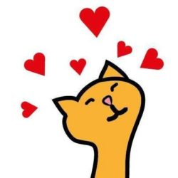 Můj život s kočkou – nová osvětová kampaň již zítra v 21:00