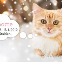 Kočičí přání spuštěno – Vánoce 2018