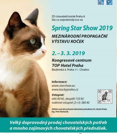 vystava_spring_star_show