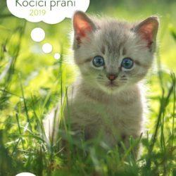 kocici_prani_jaro2019