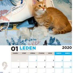 Kalendář na rok 2020 je v prodeji