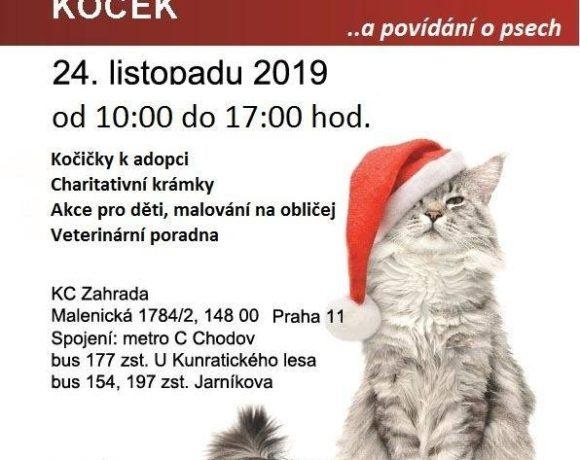 umistovacka_KCZahrada_listopad2019