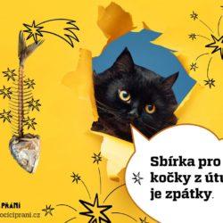 Kočičí přání Vánoce 2019